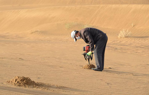 Workers devote themselves into desertification control
