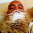 Cat bearding: Hottest feline craze takes over internet