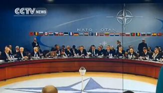 NATO: Stands in strong solidarity with Turkey
